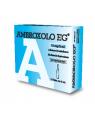 Ambroxolo eg aer 10 f 15 mg 2 ml