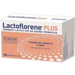 Lactoflorene Plus 12bust Monod