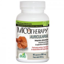 Micotherapy Auricularia 90 Capsule