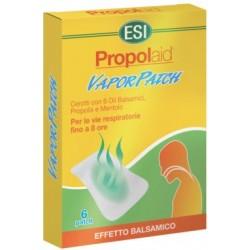 Propolaid Vaporpatch 6 Cerotti