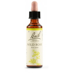Wild Rose Bach Orig 20ml
