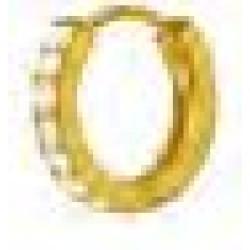 Orecchini Post Foratura Crystal Hoop 14gp Bjt991