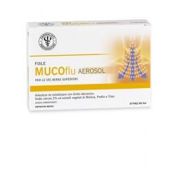 Lfp Aerosol Lfp Mucoflu Soluzione Ipertonica 10 Fiale Monodose Da 3 Ml