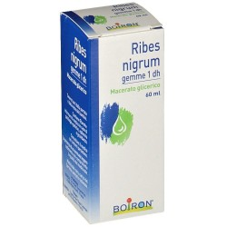 Boiron Ribes Nigrum Gemme 1 DH Macerato Glicerico 60ml