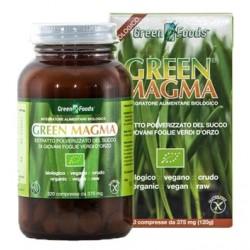 Green Magma Polvere d'erba d'orzo 320cpr da 375g (120g)