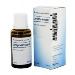 Lymphomyosot Heel Gocce 30ml
